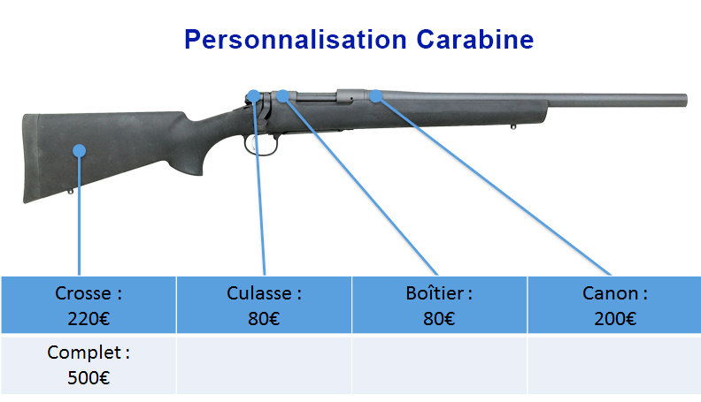 Tarifs personnalisation carabine peinture - site armurerie TPC